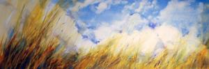 michael-ireland-chicago-artists-blue-sky